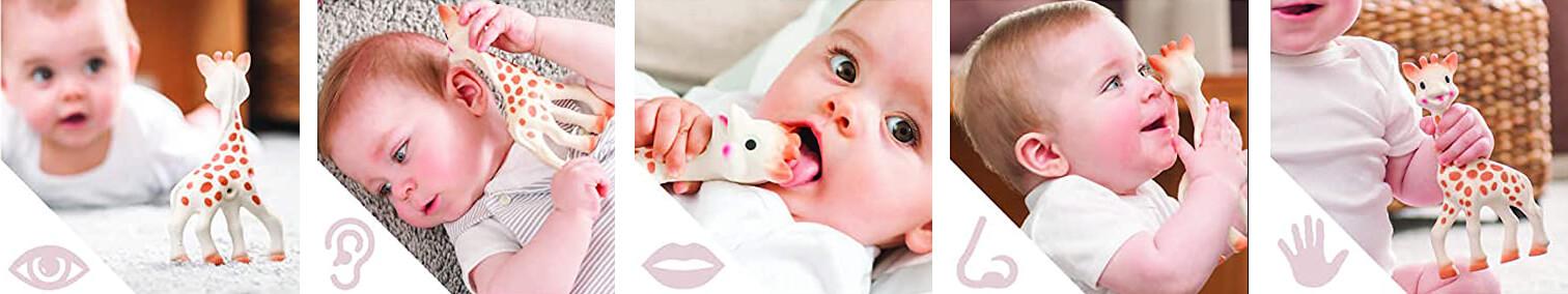 """Der Beissring """"Giraffe Sophie"""" spricht fünf Sinne des Babys an und hilft ihm beim Zahnen. (Foto: Amazon)."""